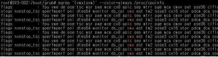 CPU의 가상화 지원 여부 확인