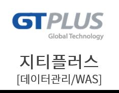 지티플러스[데이터관리/WEB서버/WAS/운영체제(OS)]